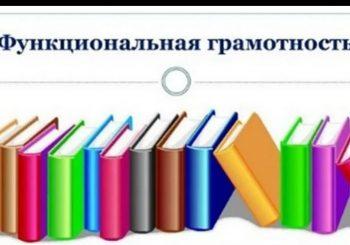 Результаты Регионального марафона  по функциональной грамотности